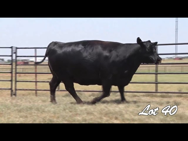 Pollard Farms Lot 40