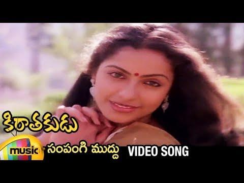 Kirathakudu Telugu Movie Video Songs - Sampangi Muddu Song - Chiranjeevi, Suhasini Mani Ratnam