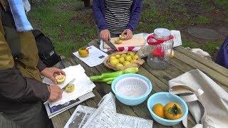 2018年10月17日(水) 中庭でとれた花梨の実を砂糖漬けにしました。 柿とマコモダケをいただきました。 フリーBGM素材「so sweet」by 稿屋 隆.