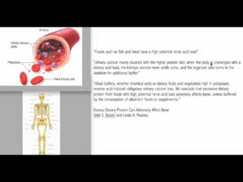 Download Youtube: The Dangerous Effect of Meat on the Human Body