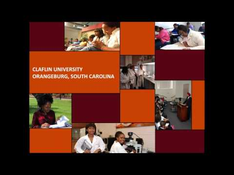 study abroad consultants  | Claflin University webinar