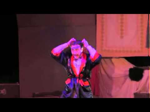 Europa- Park Rust Coperlin Zauberer Show Globe Theater Waterloo