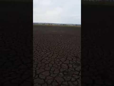 RP▶ Lagoa da Brasilinha 17 seca completamente em Planaltina Goiás