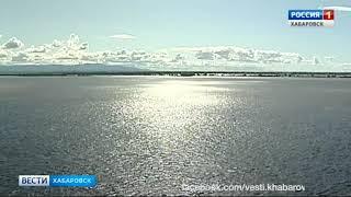 Вести-Хабаровск. Возобновление дачных рейсов