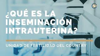 ¿Qué es la Inseminación Intrauterina? | Nuestros tratamientos