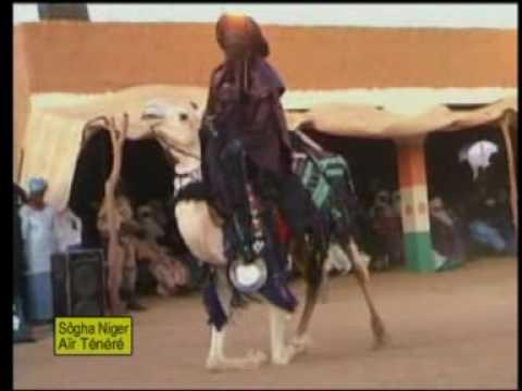 Niger Tenere dance