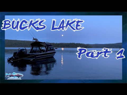 BUCKS LAKE CAMPING AND FISHING | CATCH AND COOK | DAY 1 & 2