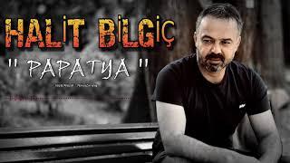 Halit Bilgiç - Papatya