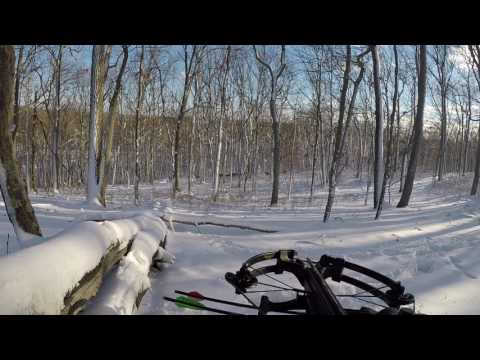 Nj Winter Cross Bow Hunt