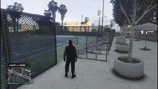 Grand Theft Auto V glitch
