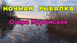 Шатура Рыбалка Озеро Лещ Ночная рыбалка на озере Муромское 1 мая 2021
