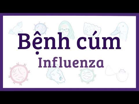 Bệnh cúm - nguyên nhân, triệu chứng, chẩn đoán, điều trị, bệnh lý