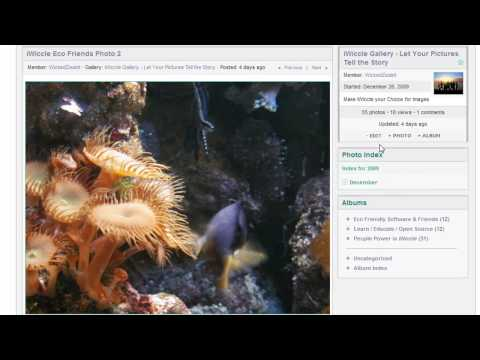 dating website open source software