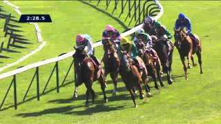 Vidéo de la course PMU QATAR PRIX CHAUDENAY