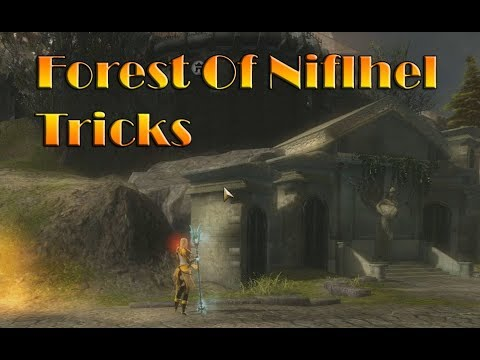 GW2: Forest of Niflhel Tricks/Jumps every PvP player should know