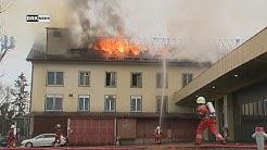 Adetswil ZH: Brand in Werkgebäude