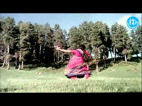 Andela Ravamidhi Song - Swarnakamalam Movie   Venkatesh   Venkatesh   Ilayaraja