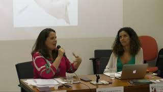V Escola de Primavera Intérpretes do Brasil   parte 4