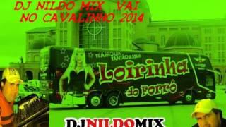 BANDA LOIRINHA DO FORRO E DJ NILDO MIX  VAI NO CAVALINHO 2014