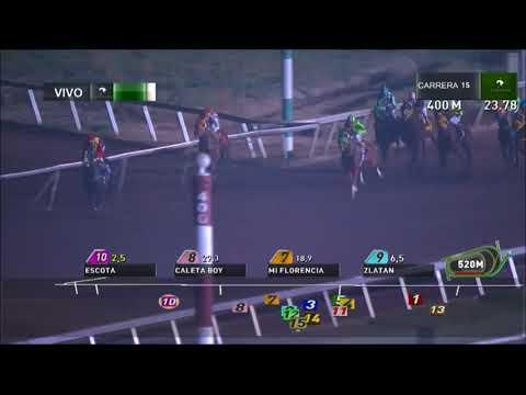 Carrera N° 15, Fecha reunión:21-05-2018 Club Hípico de Santiago