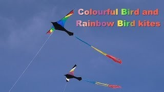 Colourful Bird and Rainbow Bird kites together