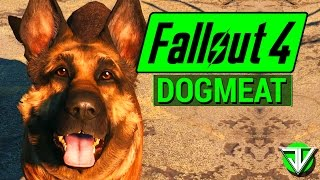 FALLOUT 4: Dogmeat COMPANION Guide! (Everything You Need to Know About Dogmeat)