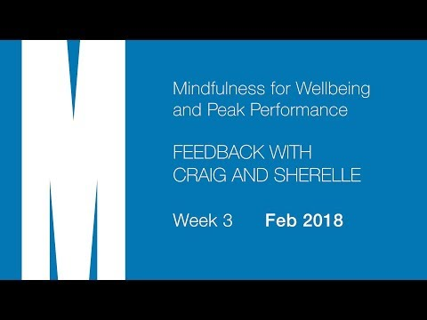 Feedback from Craig and Sherelle - Week 3 - Feb 2018