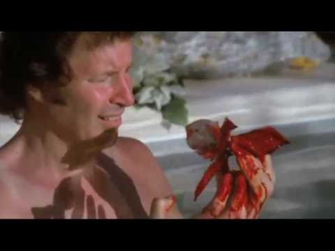 Neil Breen Marathon Party Highlights