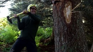 How to Safely Fell a Tree - Where the Wild Men Are with Ben Fogle - BBC