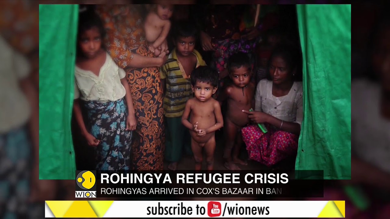 Plight of Rohingyas is world's fastest growing refugee crisis