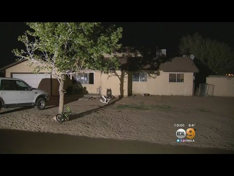 20 Children, 18 Dogs Rescued From Victorville Home With Deplorable Conditions