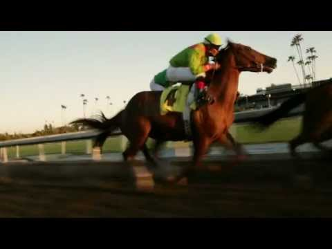 Luck HBO EPISODE 1 FIRST RACE