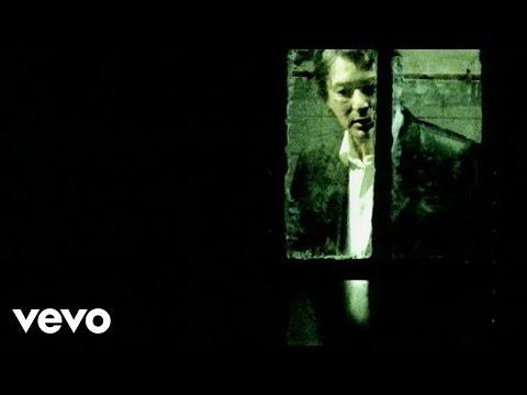Alain Bashung - La nuit je mens