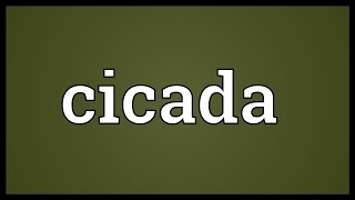 Cicada Meaning