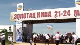 Выставка ''Золотая Нива'' открылась в Усть-Лабинске