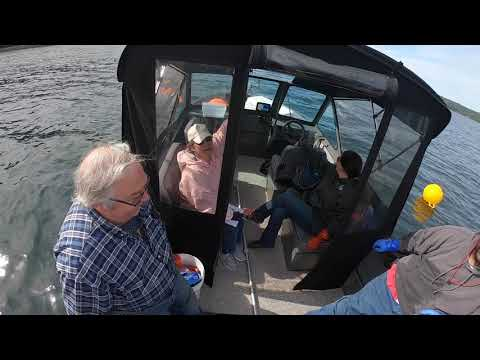 Spot Shrimp Pot Rigging And Enjoying Your Catch