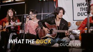 Duck Live 63 - สอนใคร - Pae Arak Ft. De Flamingo