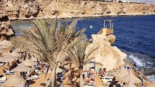 ВЛОГ из ЕГИПТА отель Dreams Beach Resort 5 2020 год