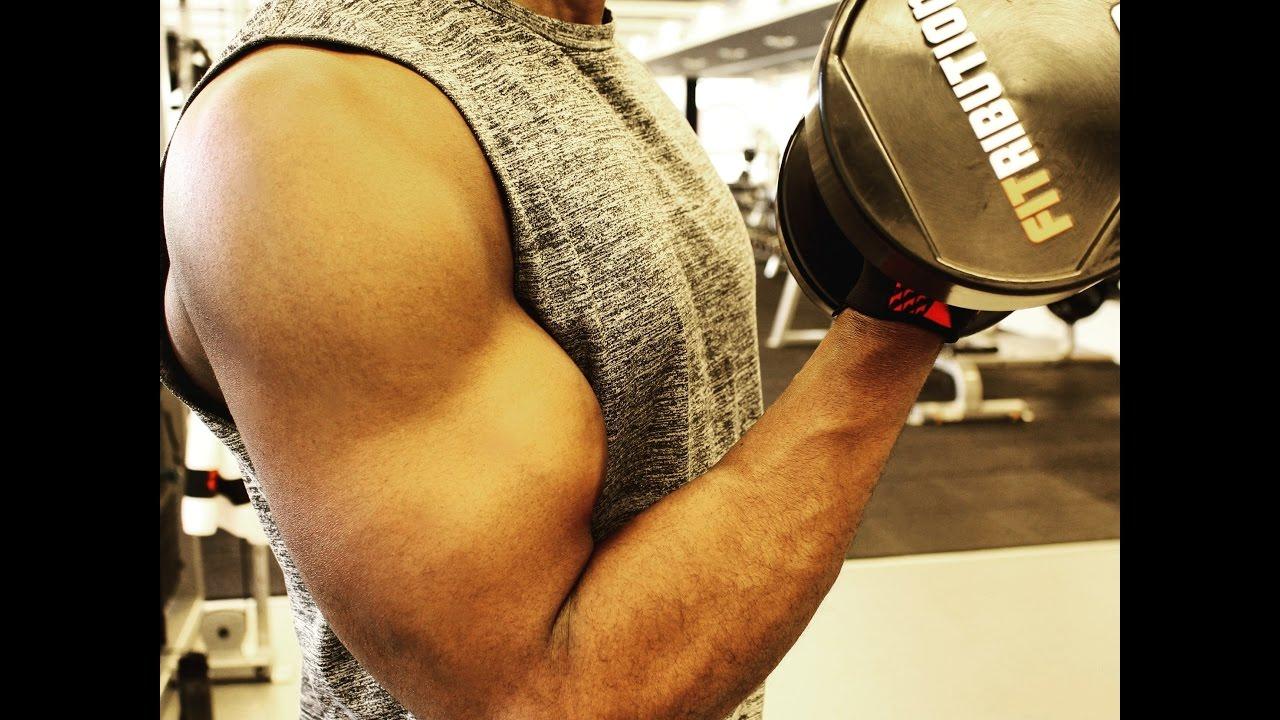 Exercices Musculation Biceps - Top 5 - Débutant ...