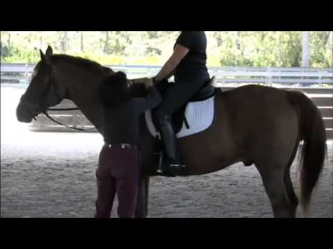 Dressage Trainer Jane Savoie Explains Elastic Contact