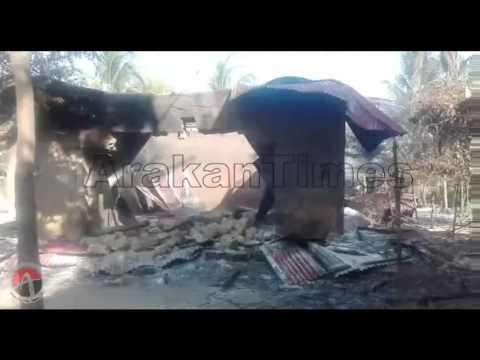 Myanmar military , BGP forces & Rakhine loot shops of Rohingya Muslims in Kula Bil village Hamlet