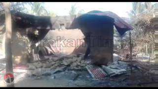 Myanmar military , BGP forces & Rakhine loot shops of Rohingya Muslims in Kula Bil village Hamlet