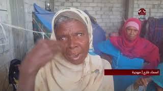 نازحون من مديرية حيس يكابدون المعاناة في الضالع | تقرير عبدالعزيز الليث
