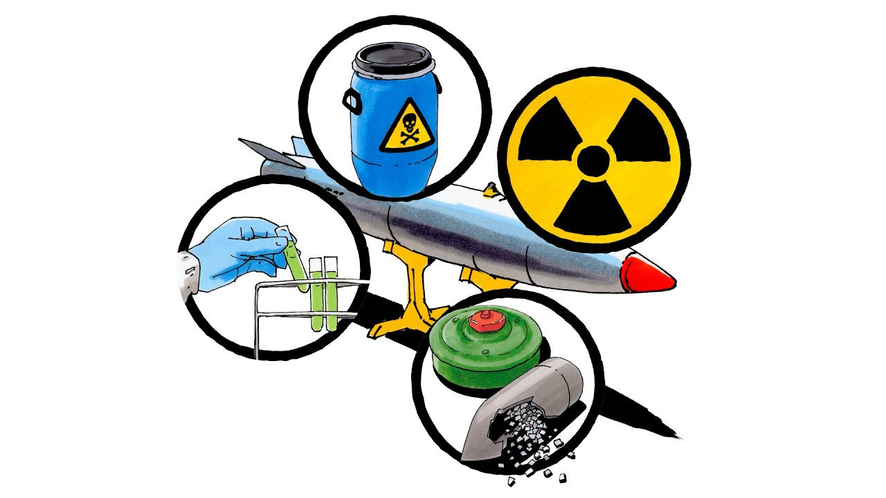 11월 29일 국민투표:전쟁물자 생산업체 자금지원 금지