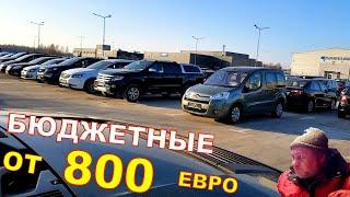 Бюджетные авто от 800 евро, авто из Литвы цены на декабрь.