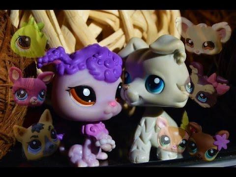 Littlest Pet Shop: Jack&Charlotte (Film)