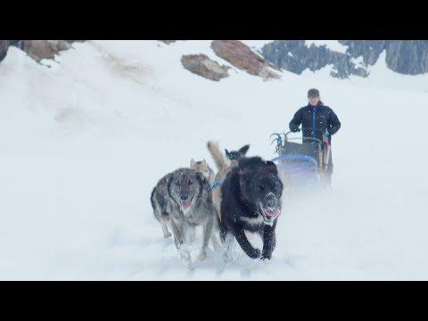 Iditarod Winner Shares Her Victory Story | Princess Cruises