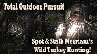 Spot and Stalk Hunt New Mexico Merriam