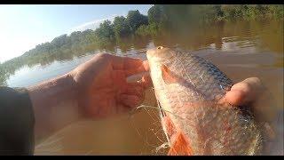 Рыбалка сетями летом после дождей