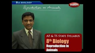 AP & TS State Board Syllabus | 8th Biology | Reproduction in Animals | Live Video